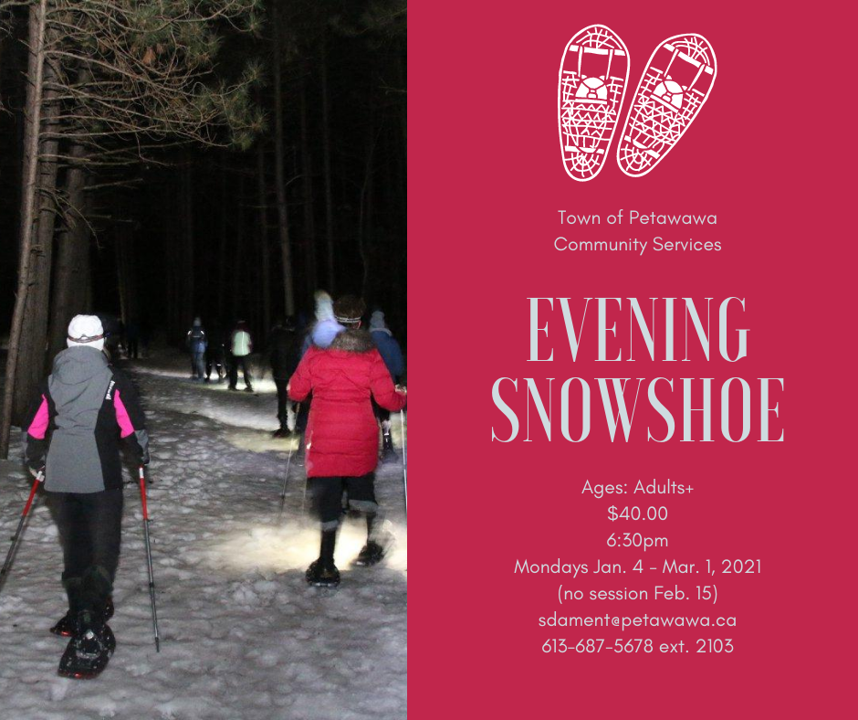 Image of adults snowshowing through a forest in a night setting