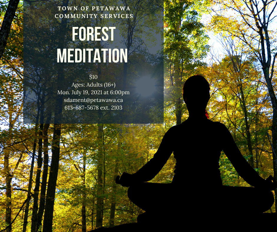 Person meditating silhouetted against a sunny forest