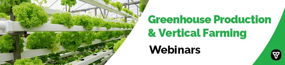 greenhouse plants announcing Ontario supported webinars