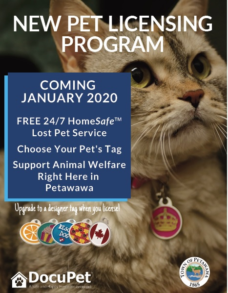 Pet tagging program