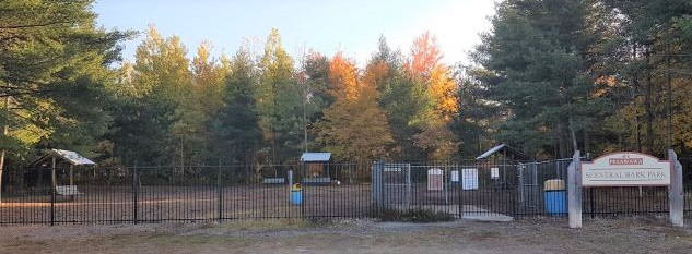 Image of dog park from outside the fence