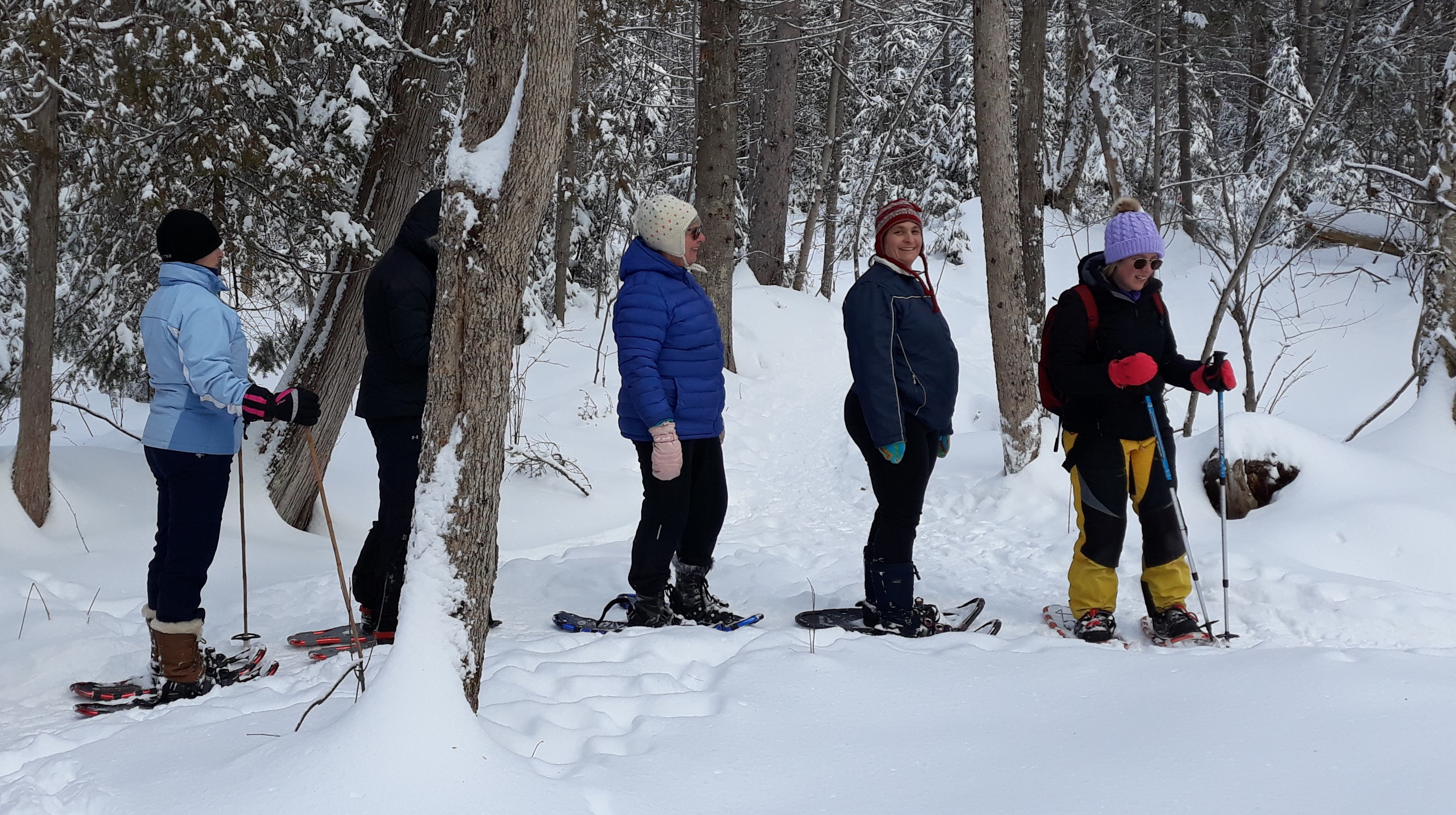Line of snowshoe enthusiasts in the woods