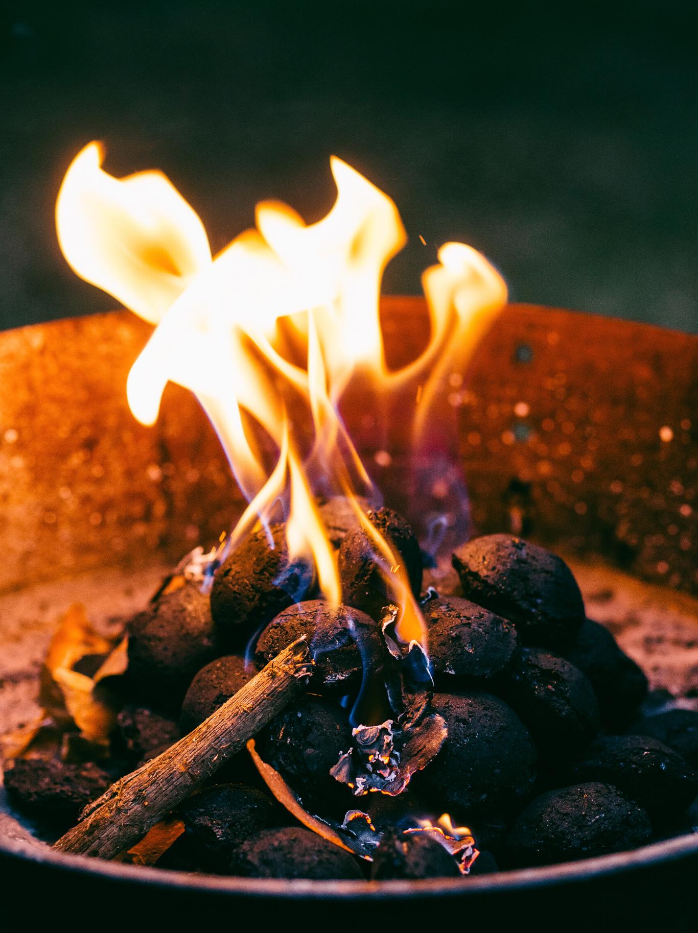 camp fire, kids, bonfire, smores