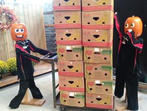 <b>The bannana crate Pumpkin People</b>