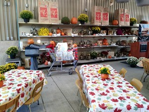 <b>An image of a Pumpkin Person display and the room set up</b>
