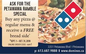 <b>Domino's Pizza PR ad</b>